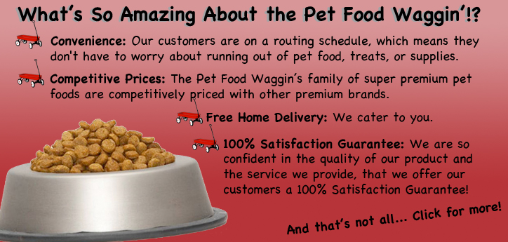 About Pet Food Waggin'